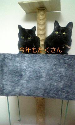 071217_174622_ed.jpg